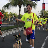 Pet Express Doggie Run 2012 Philippines. Jpg (68).JPG