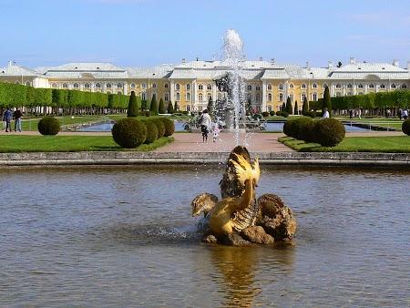 Circuit Rusia: Palat Petrodvaret