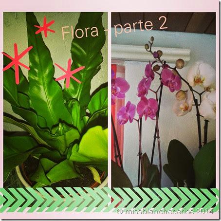 IMG_20140923_165443