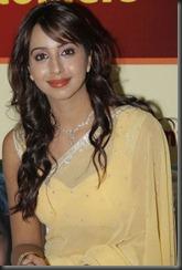 actress_sanjana_gorgeous_pic_in_saree