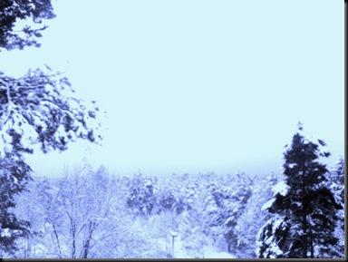 2011-12-08 Sne