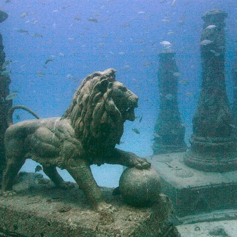 Neptune Memorial Reef: An Underwater Cemetery