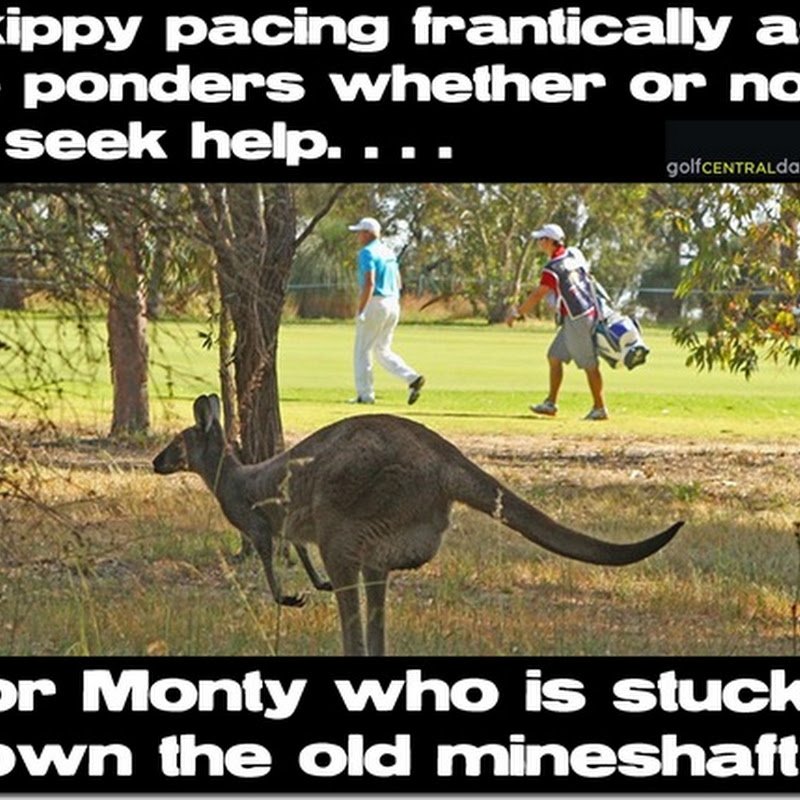So That's Where Monty Went To!