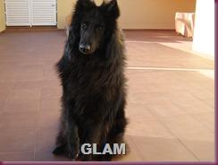 lotta y glam 002