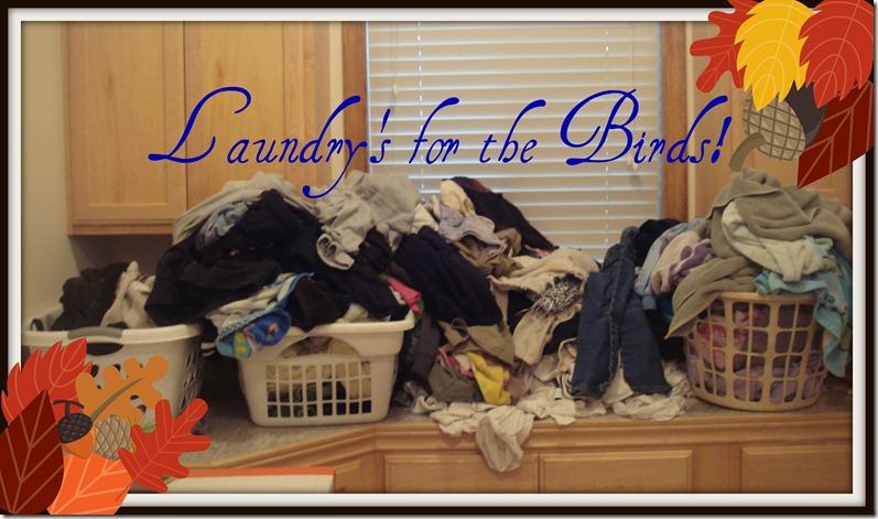 laundry 002