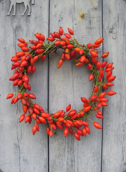 531147_379548532128354_1346059696_n rosehip wreath from The Blue Carrot
