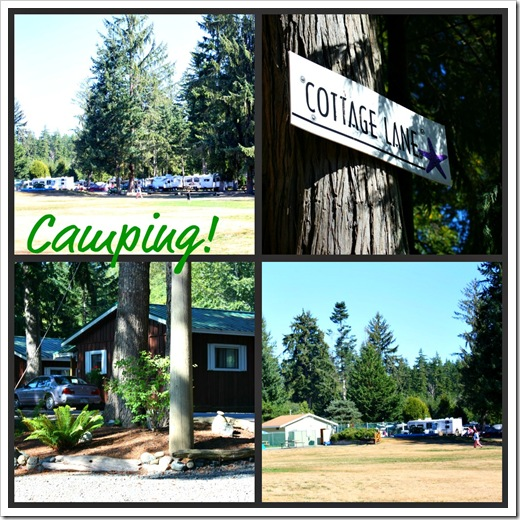campground_collage