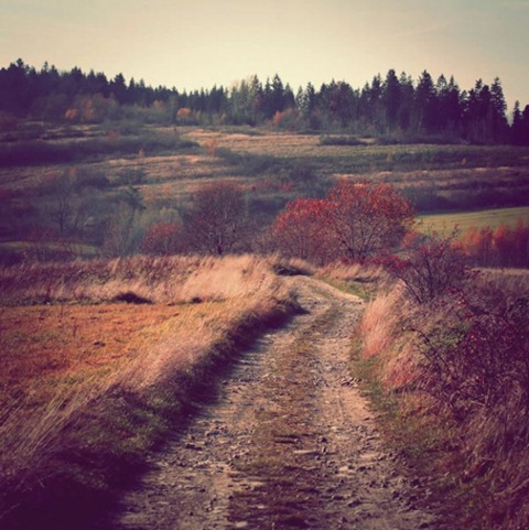 The-Scenic-Path