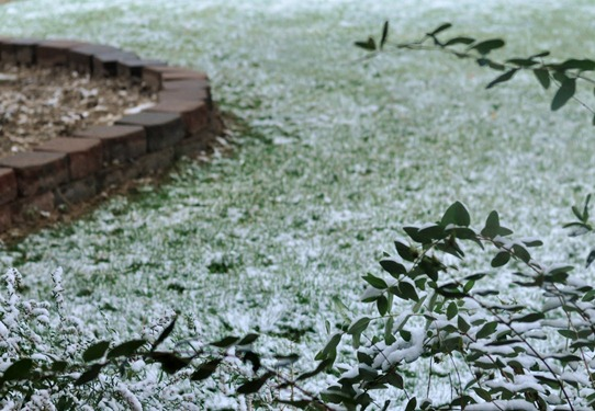 2012-10-05 snow (4)