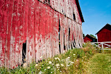 """The Red Barn"" - copyright Christina Drane"