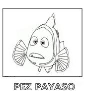 pez-payaso 41 1