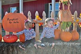 10-29-12_Pumpkin-Patch3