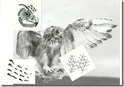 patterned papers0024