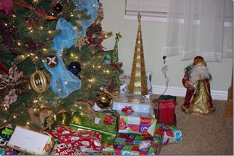 2011 November- December 098