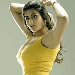 Namitha Hot (46).jpg