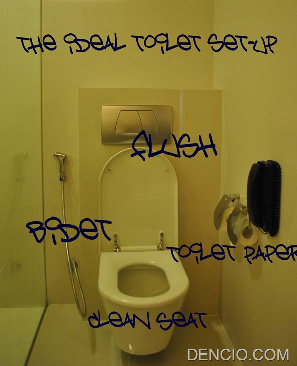 Ideal Toilet Set Up