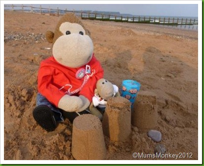 Sand Castles at Dawlish Warren
