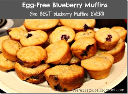 Egg-Free Blueberry Muffins