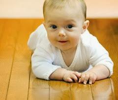 gateo bebe