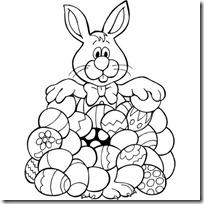 conejos pascua  (16)