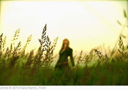 'Field Day' photo (c) 2010, Kara Harms - license: https://creativecommons.org/licenses/by-nd/2.0/