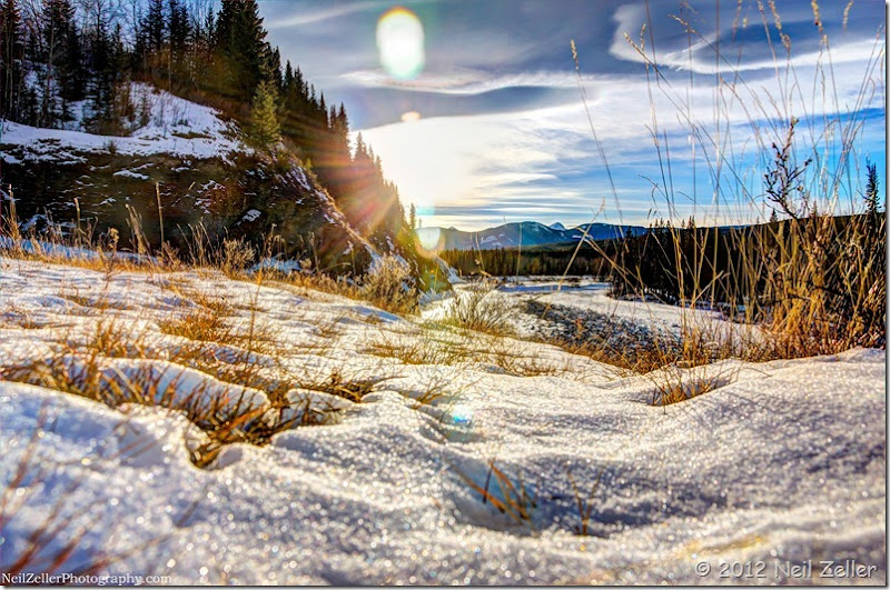 Elbow River dec 15-12