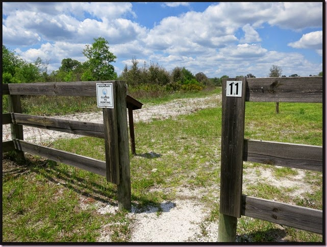 gate2IMG_3316