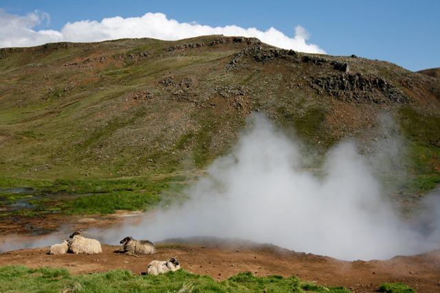 Iceland-2406