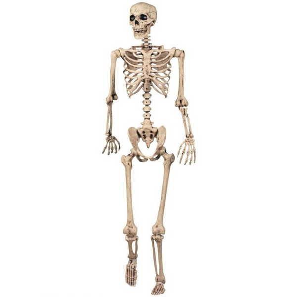 3- 300 ossos