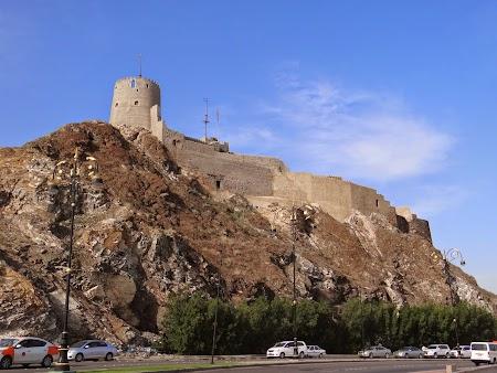 13. Cetate Muscat.JPG
