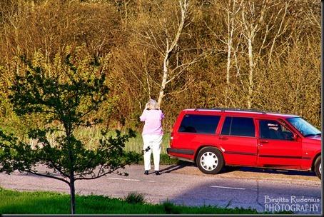 people_20120503_shootingview