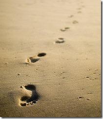 footprint3