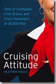 Cruising Altitude Cover