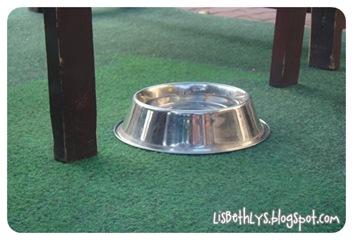 Hundebar under bordet på en restaurant.