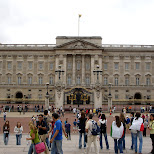 in front of buckingham palace in London, London City of, United Kingdom
