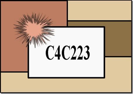 C4C223