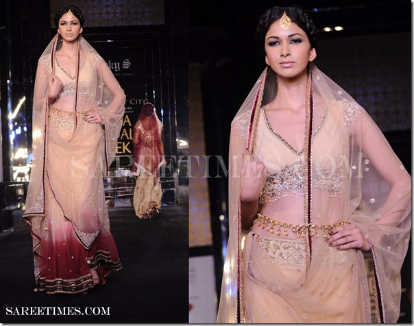 Designer_Rocky_S_Aamby_Valley_India_Bridal_Week_2011. (8)