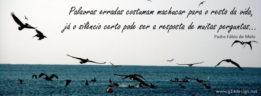 Pensamento De Augusto Cury
