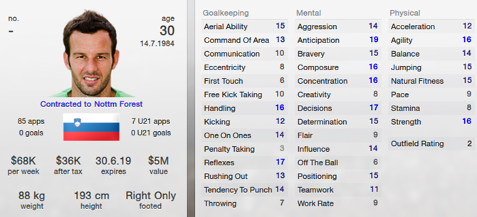 Samir Handanovic in Football Manager 2013