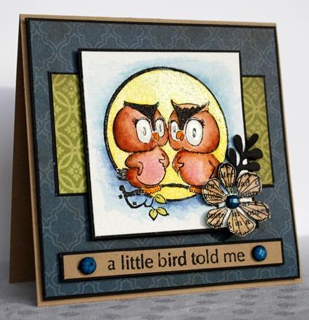 a little bird told me 4