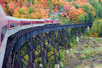 Agawa Canyon Fall Tour along one of many trestles.