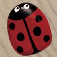 Pebbleladybird2.jpg