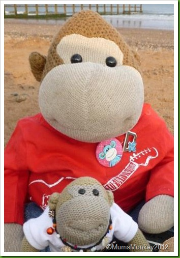 Darrell and Nigel Mums Monkey