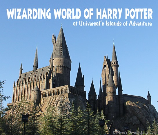 Wizarding World of Harry Potter by Mom'sGonnaSnap