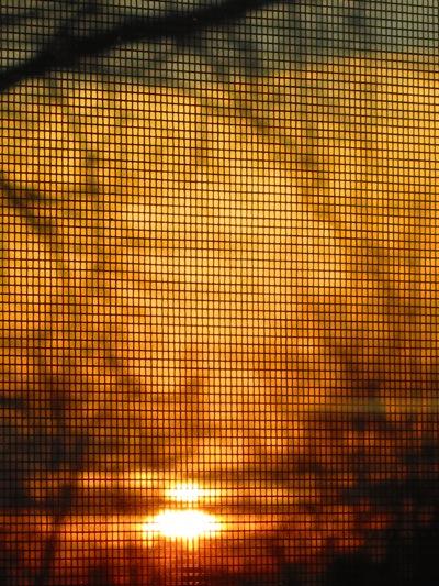 NJ sunset3