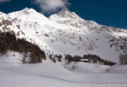 2014-02-09_Maloja (109) (Medium)