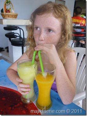 10 fruit shake
