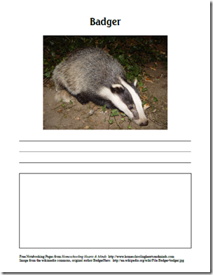 badger page
