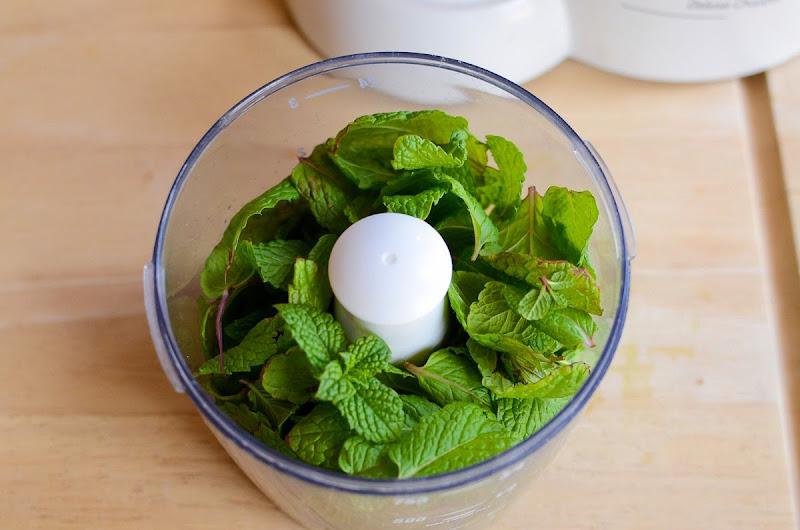 mint cilantro chutney-9491