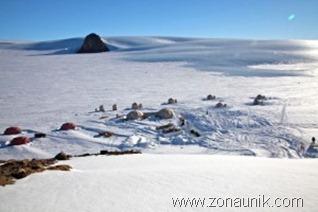 kebunbinatang-antartika